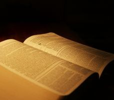 954634_bible